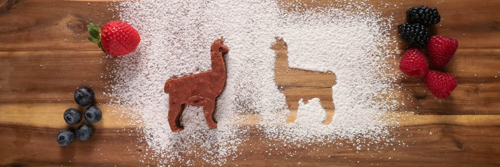 Die besten Brownies der Welt | Lama | Rezept | Lieblingsspeise.at